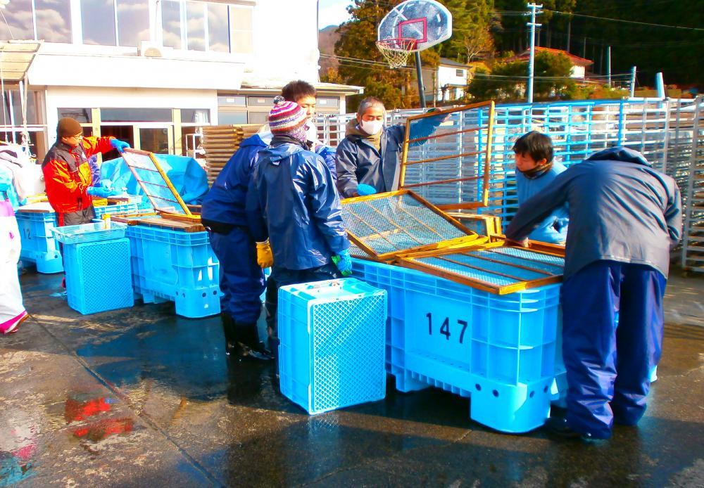 ボランティア活動 漁具洗浄