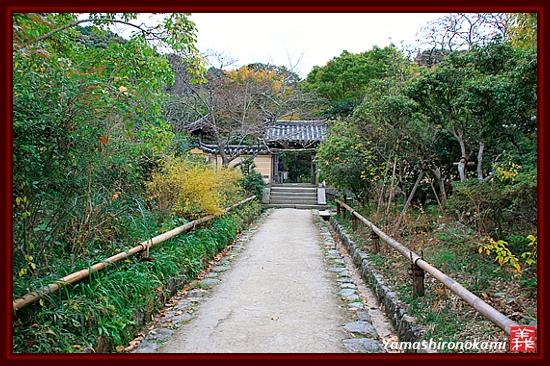RY-20111115-浄瑠璃寺 (43)
