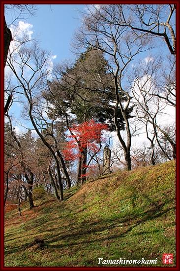 RY-2011-11-20-高遠城 (78)
