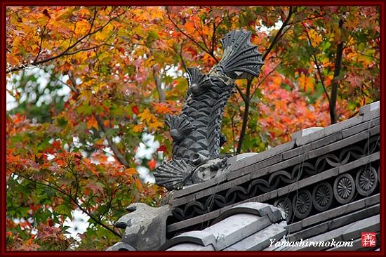 RY-2011-11-23-海住山寺 (86)