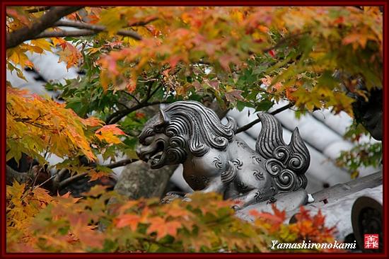 RY-2011-11-23-海住山寺 (85)