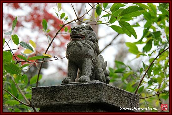RY-2011-11-23-海住山寺 (52)