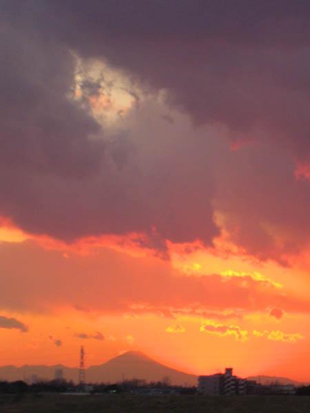 20120131_6tate.jpg