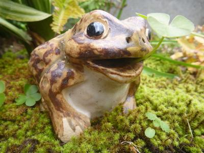 ハッピー蛙 2