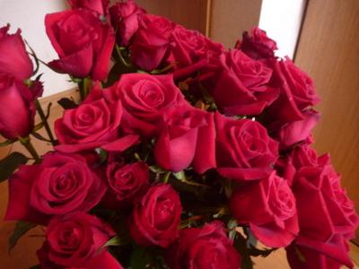 1本多いバラの花