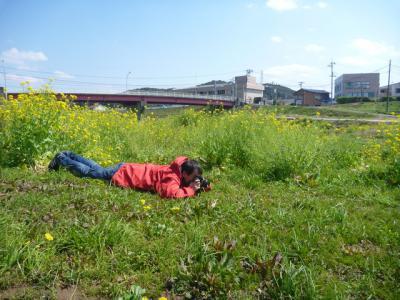 寝転んで撮る人