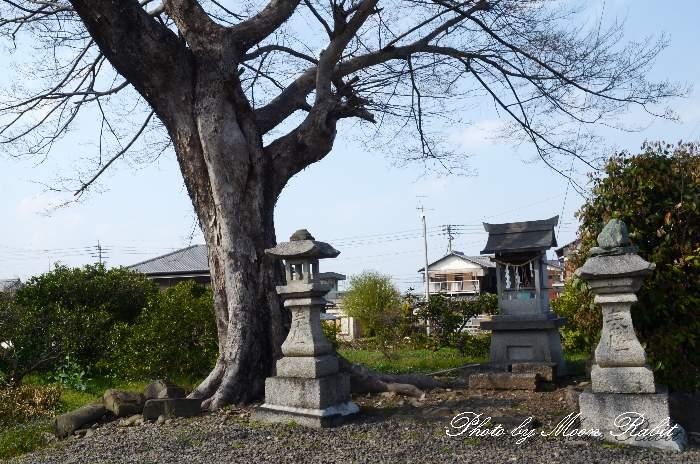 西泉荒神・お荒神さん 赤谷川 愛媛県西条市西泉