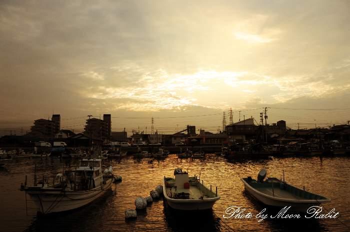 漁船 愛媛県 西条市 西条漁港