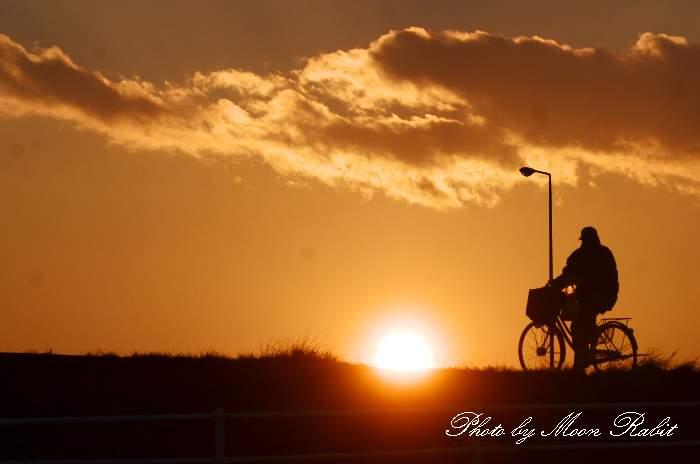 夕日と自転車 愛媛県 西条市