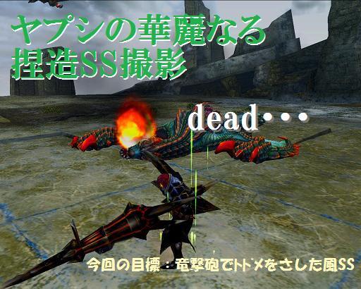 覇銃槍ヌイカムトルム試し斬り1