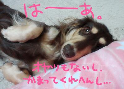 20111112_029.jpg