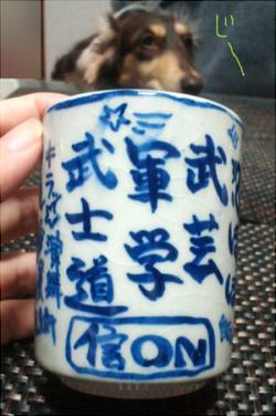 2011_1029_015.jpg