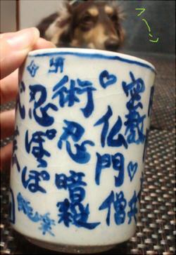 2011_1029_016.jpg