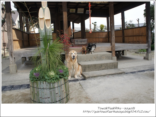 画像2011-12-4 018-1
