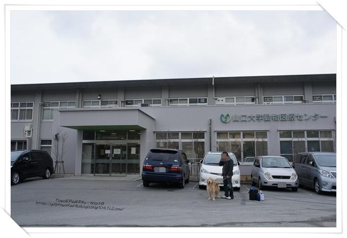 画像2012-02-02 001-1