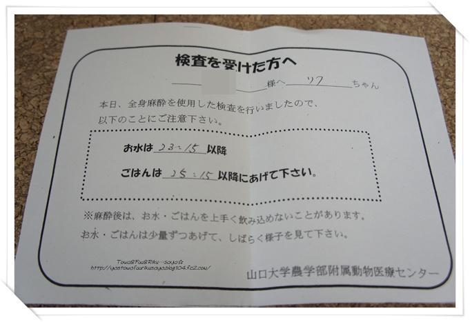 画像2012-02-03 003-1