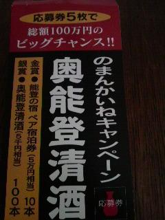 白菊 (2)