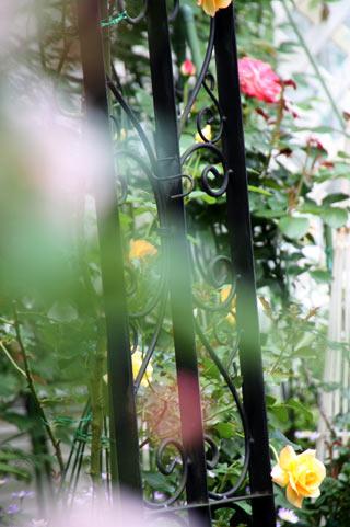 201010g30nnw0.jpg
