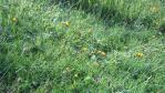 2011_0816_091625-DVC00379.jpg
