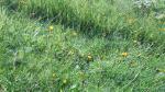 2011_0816_092237-DVC00380.jpg