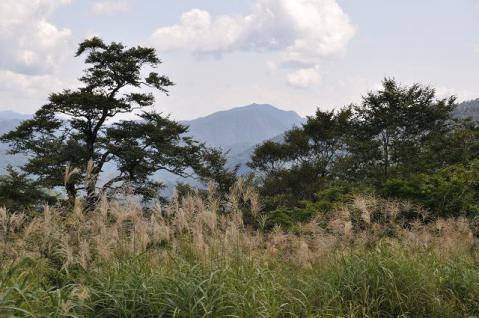 20120907 nougouhakusan057