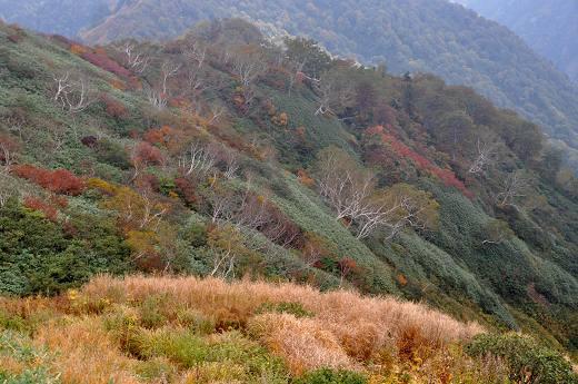 20121013 oogasayama 041