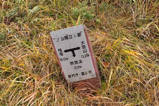 20121013 oogasayama 040