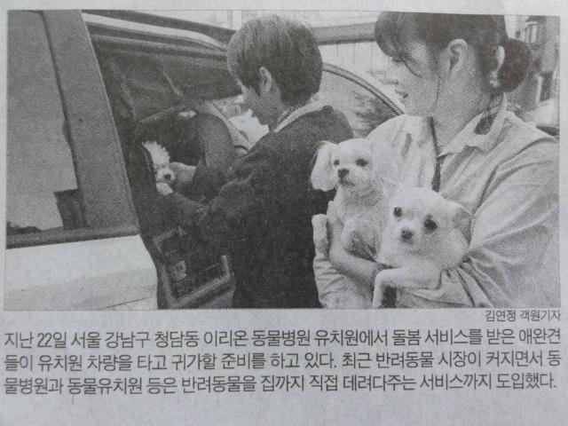 2014年1月24日 朝鮮日報 ペットの幼稚園サービス