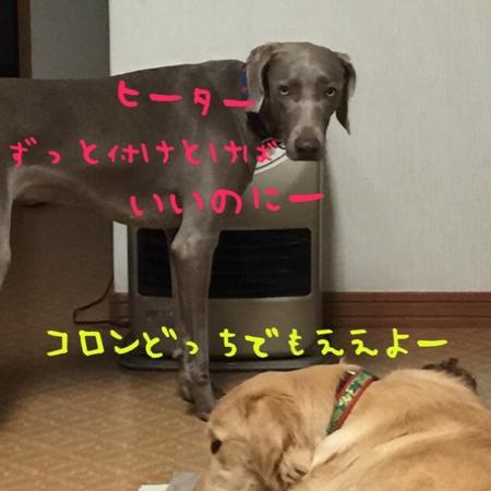 fc2blog_20141202224419ef3.jpg