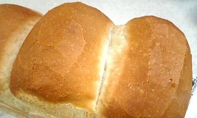 ハードトースト