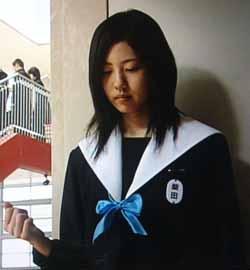 柴田中学生日記名古屋襟セーラー服白襟カバー