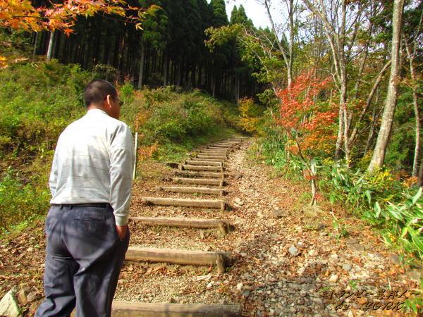 5422布滝への遊歩道141026