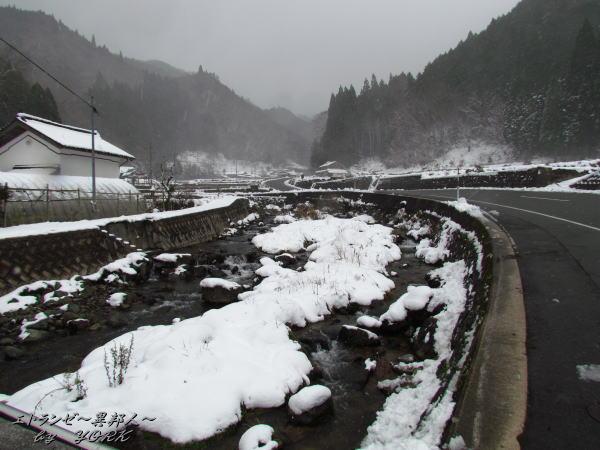 6640道は除雪済み141213