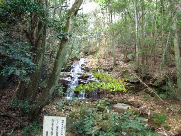 6701狐渡の滝141213