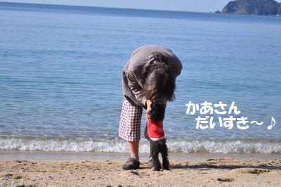 DSC_0226.jpg