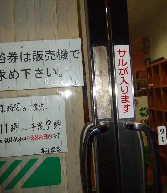 11-2011_09190040.jpg