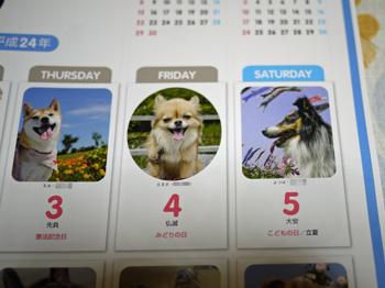 3犬めくり大判