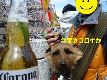 2012_0407_123718-P1050916a.jpg