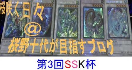 SSK_convert_20120304014253.jpg