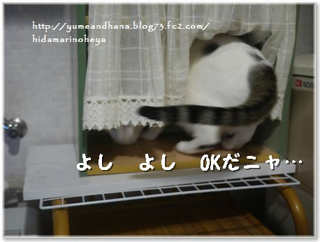 01-OK1401282.jpg