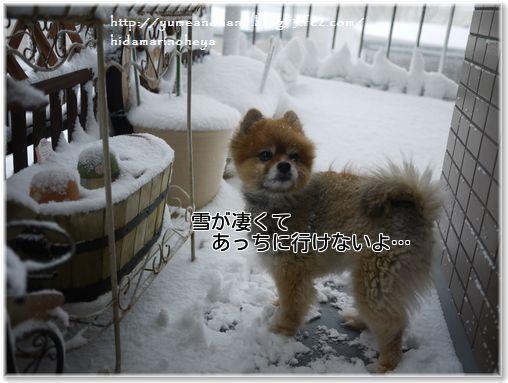 01-雪が凄いbFtiS8QYX7VVsKM1389537614_1389537700