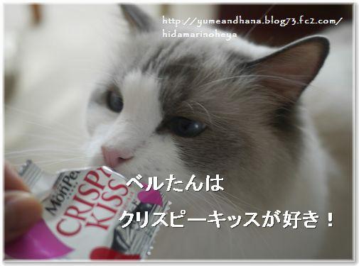 001-ベルたんおやつ140127