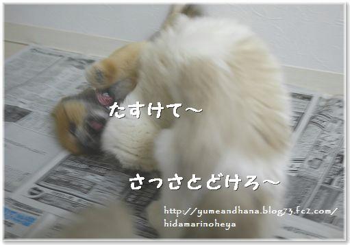 01-ゆめ、たすけて~140131