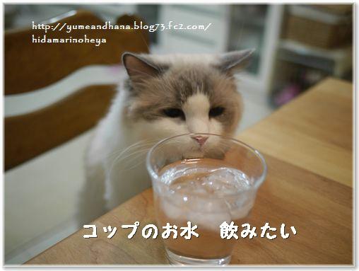 01ーお水140213