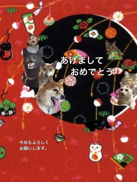 fc2blog_20130113104052fd6.jpg