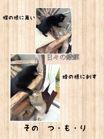 fc2blog_201301141749493ff.jpg