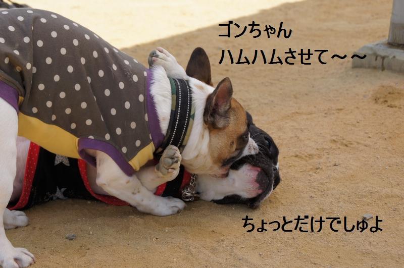 12_20120421193147.jpg