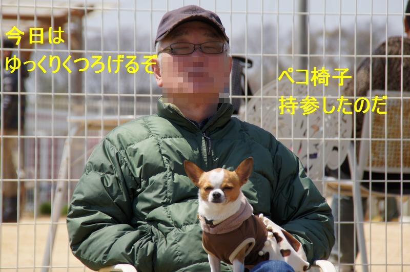 4_20120410213629.jpg