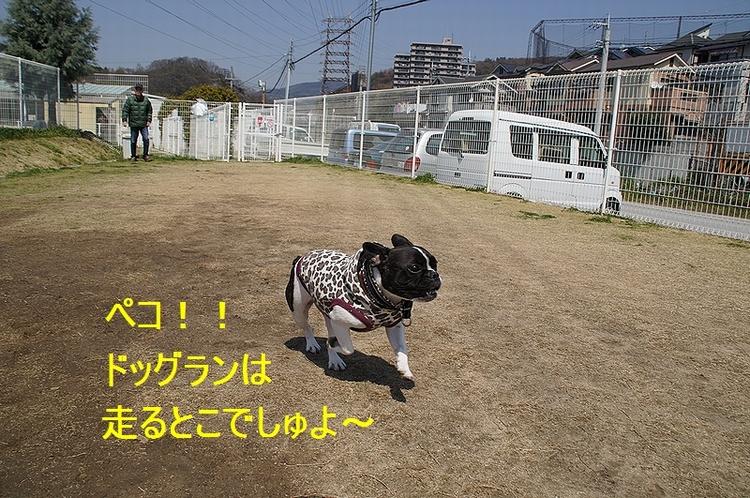 6_20120410214501.jpg