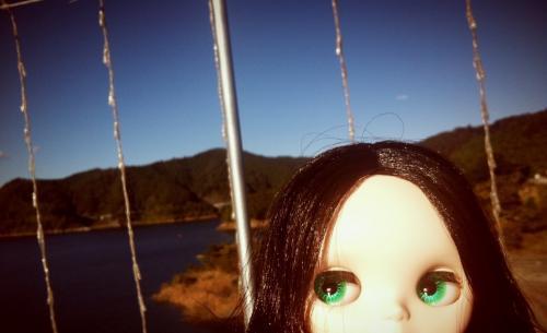2012-11-11+01-43-45_convert_20121111015003.jpg